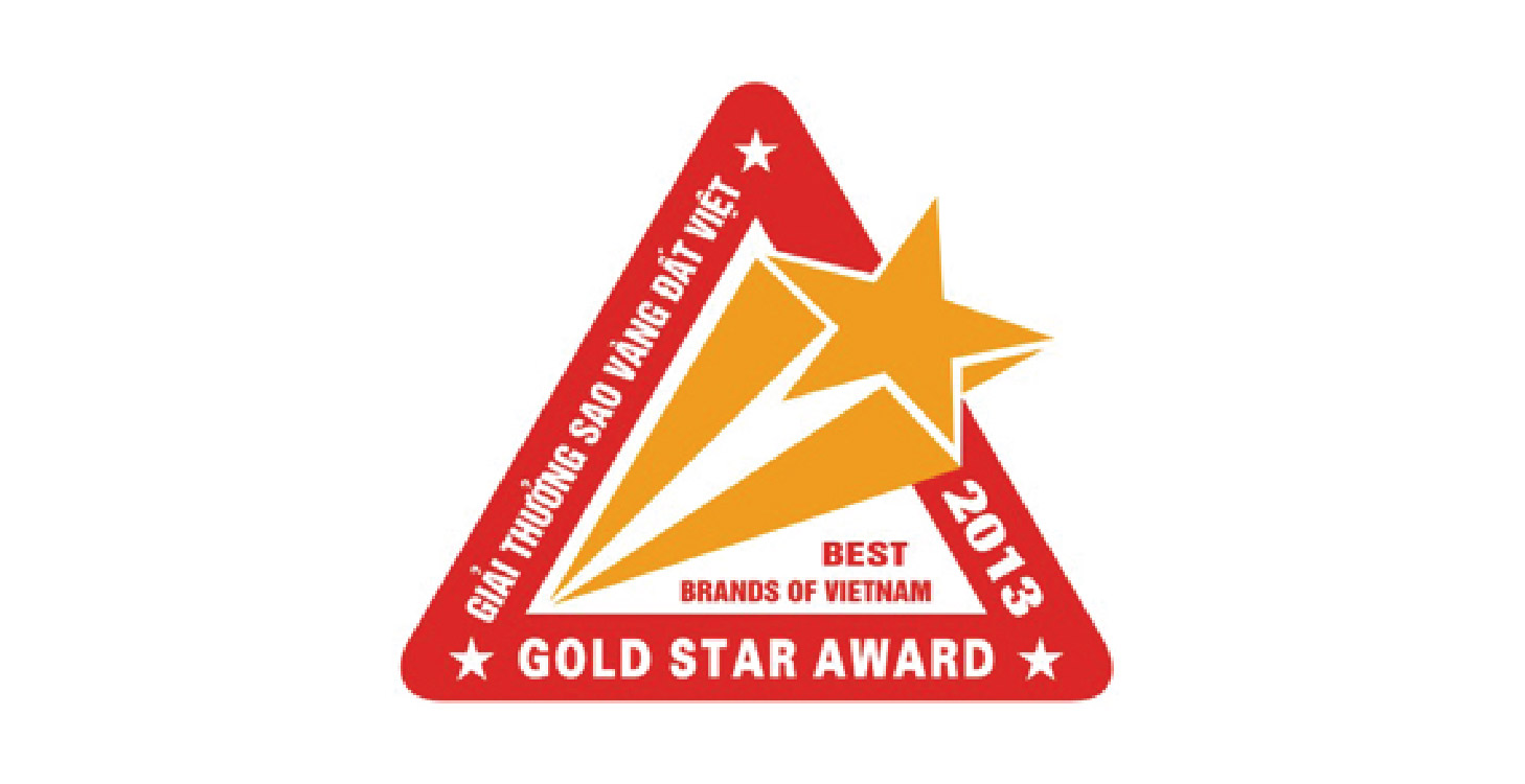 Top 100 Sao vàng đất Việt 2013